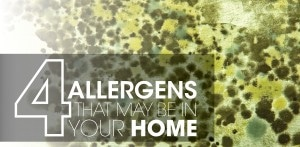 Indoor Air Quality Allergens